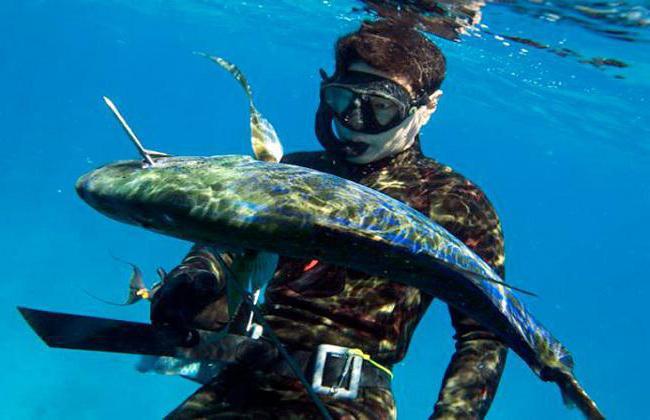 Scubamall – все, что нужно для подводной охоты