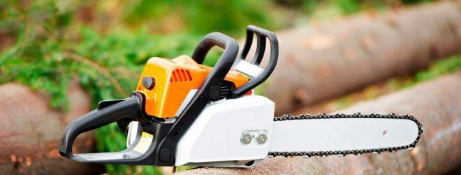 Бензопила для садовых работ – как не ошибиться при выборе
