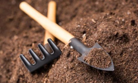 Какой бывает грунт и его применение
