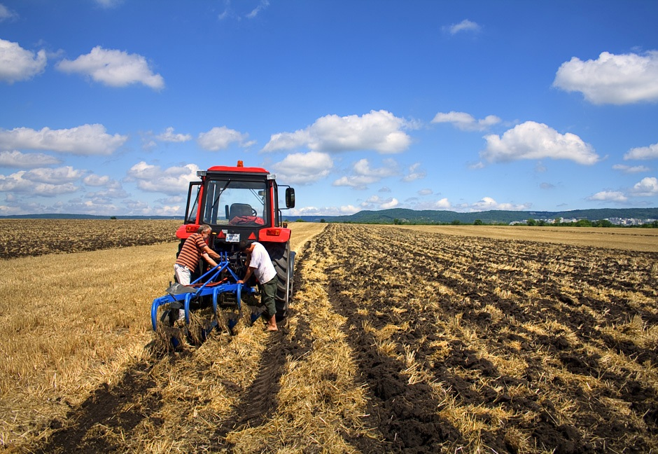 Земельные участки для фермерского хозяйства – как правильно выбрать и купить